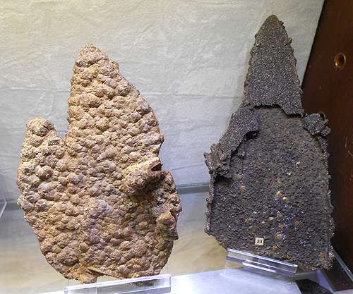 "Two examples of the classic ""Lady Slipper"" Siderite specimens from the Virtuous Lady Mine, Buckland Monachorum, Devon, England."