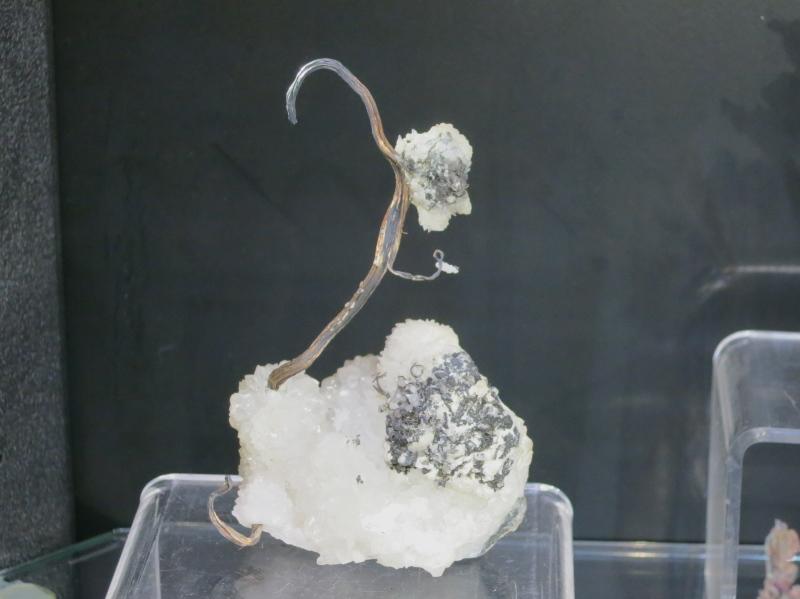 A superb Silver wire specimen nicknamed 'The Swan' from Vetagrande, Zacatecas, Mexico