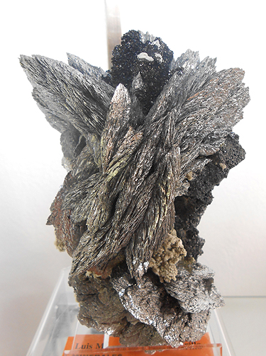 "Löllingite  from the Huanggang Fe-Sn deposit, Hexigten Banner, Ulanhad League, Inner Mongolia Autonomous Region, China. Specimen measures about 5"" tall."