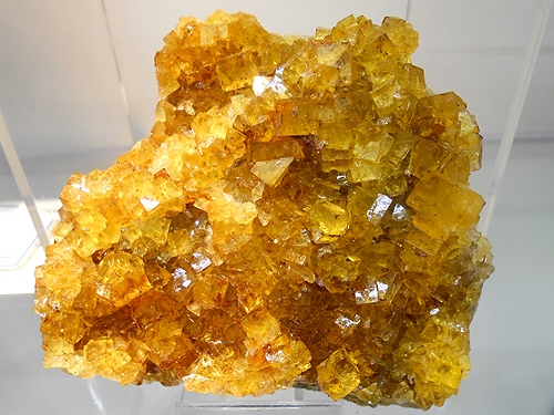 "A classic European Fluorite specimen of well developed intergrown bright yellow cubes. From Marienschacht Mine, Wölsendorf District, Schwandorf, Upper Palatinate, Bavaria, Germany. Specimen measures approximately 3.5"" across."