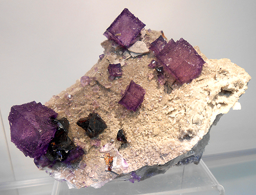 Richly coloured Fluorite crystals scattered on matrix with Sphalerite from Elmwood mine, Carthage, Smith Co., Tennessee, USA.