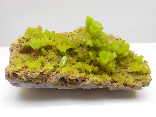 Bright greenish-yellow, hoppered, hexagonal, free standing Pyromorphite crystals on a bed of matrix from the Les Farges Mine, Ussel, Corrèze, Limousin, France.