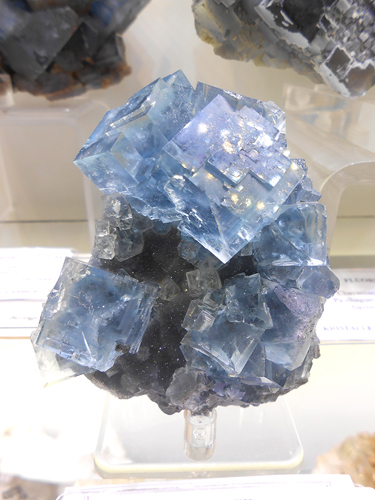 Banded blue cubes of Fluorite from Mont-Roc Mine, Villefranche d'Albigeois, Tarn, Midi-Pyrénées, France.
