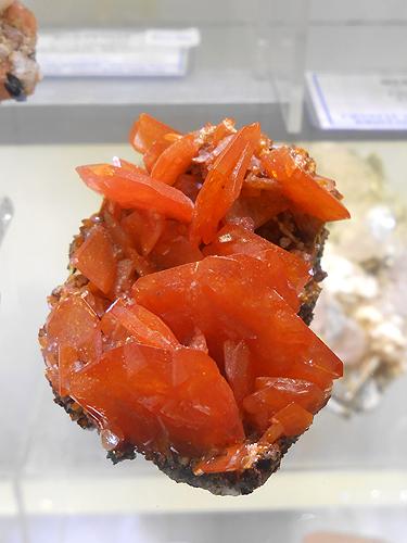 A classic Wulfenite from the Red Cloud Mine, Silver District, Trigo Mts, La Paz Co., Arizona, USA.