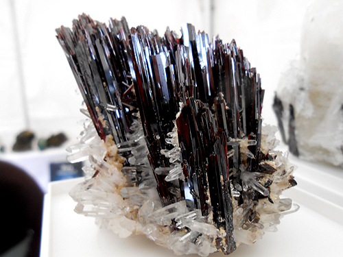 A superb spray of Huebnerite crystals with Quartz from Pasto Bueno District, Pallasca Province, Ancash Department, Peru.