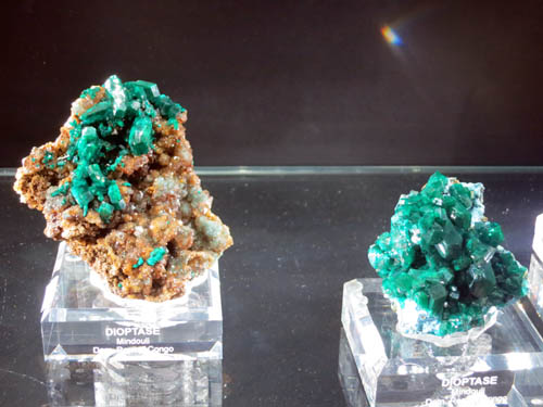 Two of the new Dioptase specimens from Mindouli, DR Congo.