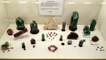 "One of our favorites was the Maine Mineral and Gem Museum display, which featured Newry Tourmaline. Amateur field collectors  discovered a large quantity of gem Tourmaline in 1972 at the Dunton Mine in Newry, Maine. A selection from the find was featured together with cut stones and ""watermelon"" cross sections."