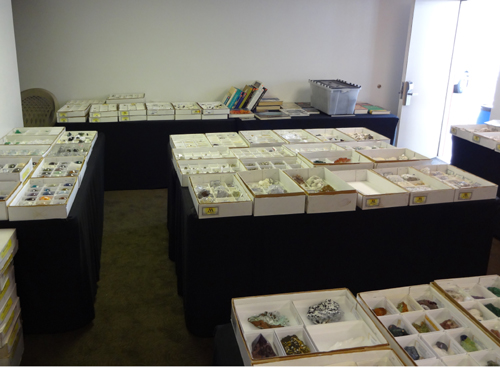 Flats of mineral specimens and books in our large wholesale room