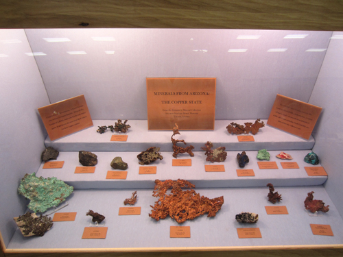 The display from the Sonora Desert Museum in Arizona.