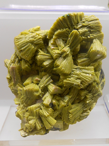 A bright yellow Autunite crystal cluster from Mount Spokane, Spokane Co., Washington, USA.