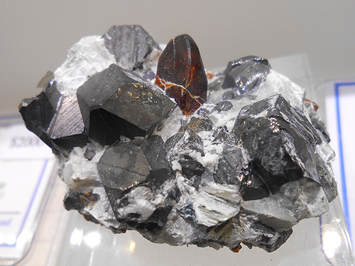 Chondrodite with Magnetite from the Tilly Foster Iron Mine, Putnam Co., New York, USA.