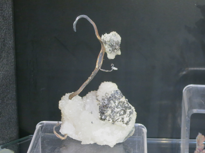 A superb Silver wire specimen nicknamed 'The Swan' from Vetagrande, Zacatecas, Mexico