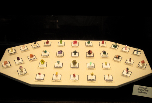 Cute miniatures from the Ralph Clark collection with a stunning array of mixed colours.