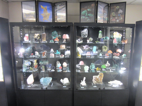 A selection of our finest specimens form the centre display.