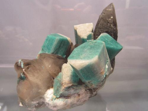Amazonite, Smoky Quartz and Cleavlandite. 992 Pocket, Smoky Hawk Mine, Florissant, Teller Co., Colorado, USA.