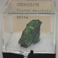 F21R-11Szenicsite1