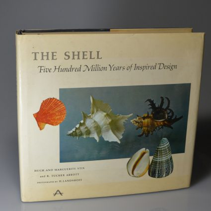 the-shell1